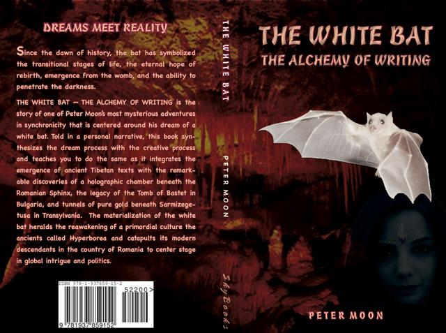 Peter-Moon-Book
