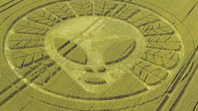 alien crop circle response - photo #32